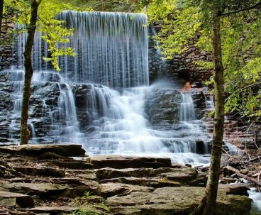 Hickory run state park