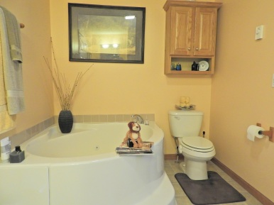 Master Bathroom (3)