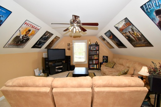 16 Entertainment Room (1)